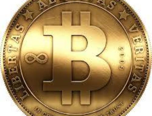 Haringlabs accepts bitcoin